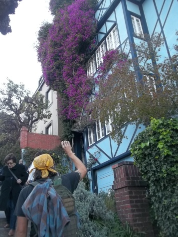 Gardens of Lombard Street